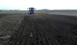 Аренда трактора МТЗ-82 Беларусь с культиватором