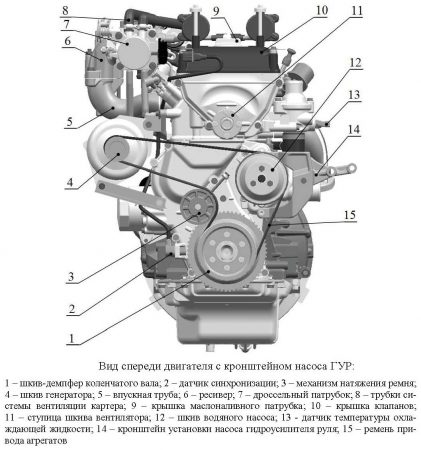 Вид двигателя ЗМЗ–40911 спереди