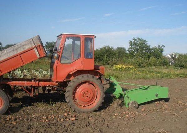 Картофелекопалка для трактора T-16