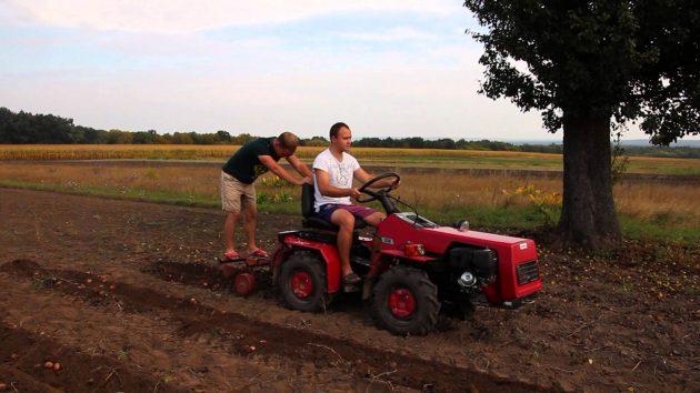 Копание картофеля трактором МТЗ 132Н