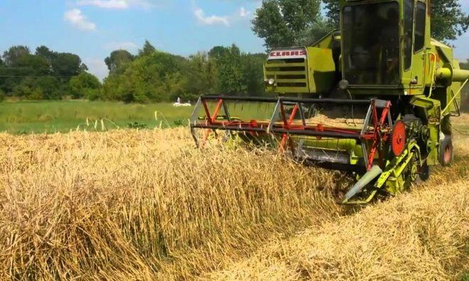 Мини комбайн для уборки зерновых