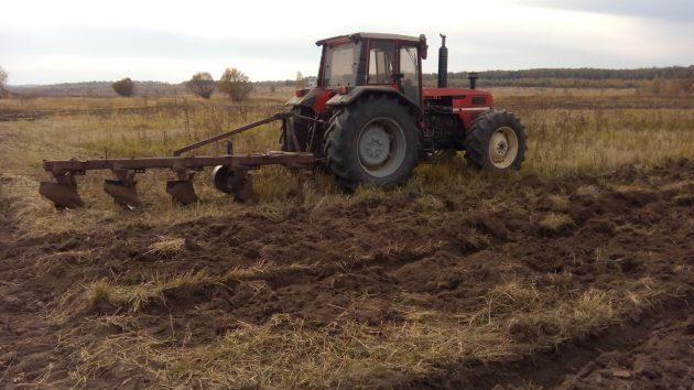 Трактор Т-40 обрабатывает землю