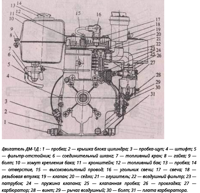 Устройство двигателя мотоблока Каскад
