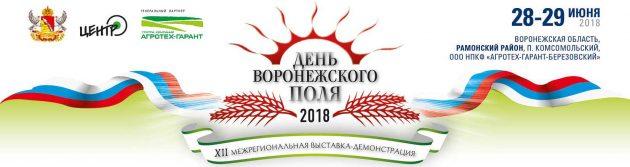 День Воронежского поля - время проведения