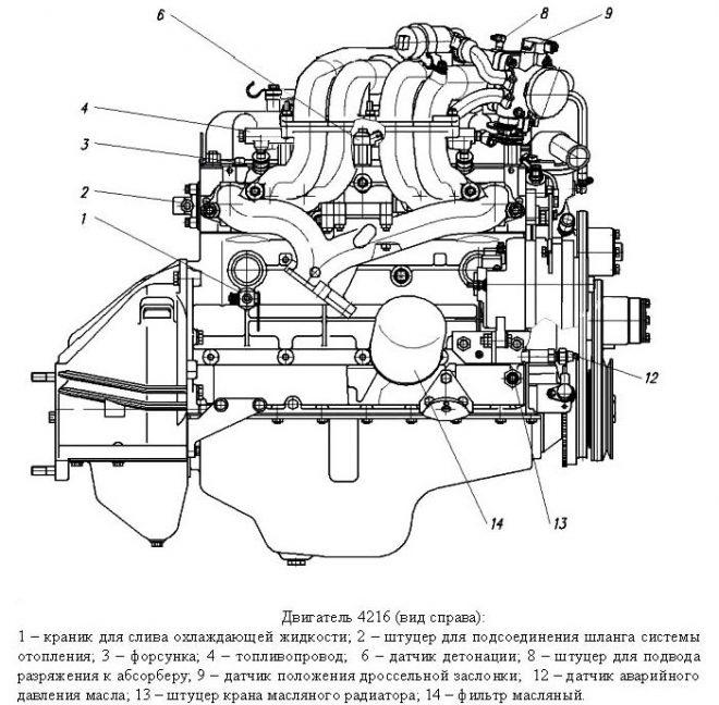 Двигатель УМЗ-4216 - схема