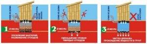 Как действуют бактерии на выгребные ямы