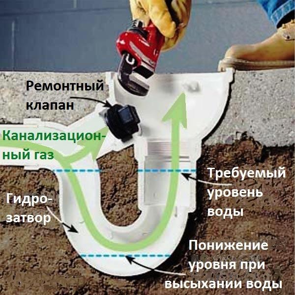 Основные пути поступления канализационных газов в помещение