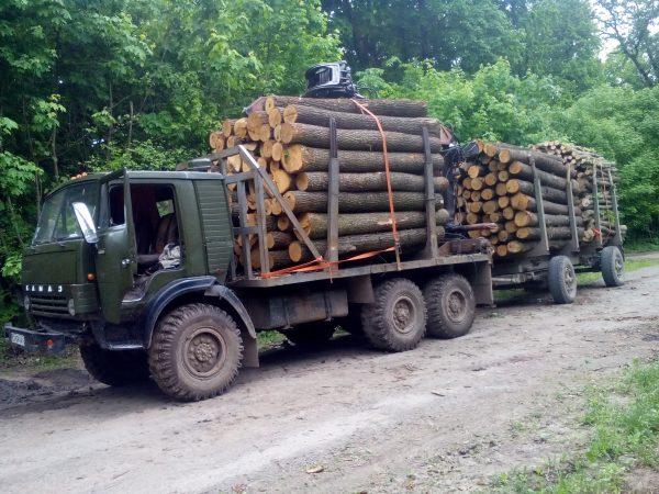Транспортировка древесины автомобилем КАМАЗ-4310
