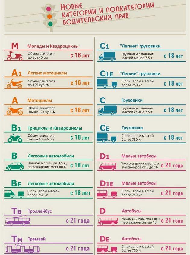 Водительские права - инфографика
