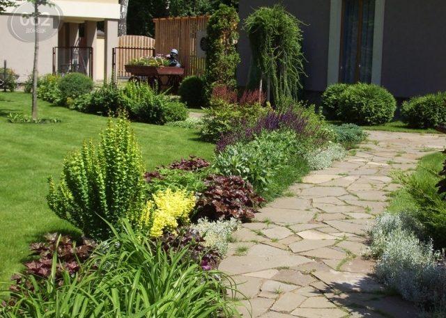 Садовая дорожка вокруг живой изгороди