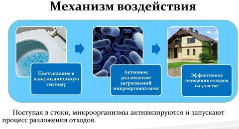 Схема действия биологических средств