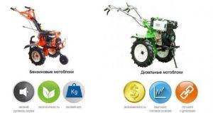 Сравнение бензинового и дизельного мотоблока