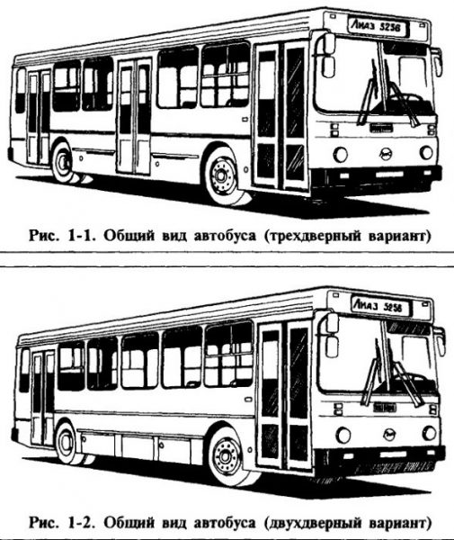 ЛиАЗ-5256 в двух- и трехдверном варианте