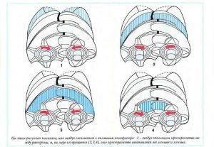 Принцип работы винтового воздушного компрессора