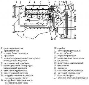 Устройство системы охлаждения двигателя УМЗ-4216