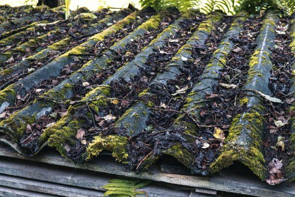 Заростание крыши мхом - одна из причин появления трещин на шифере